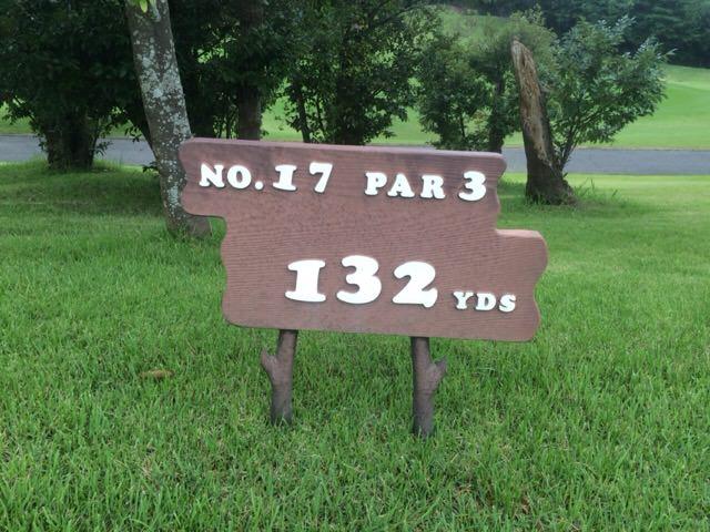 NO.17 PAR3 132YDS