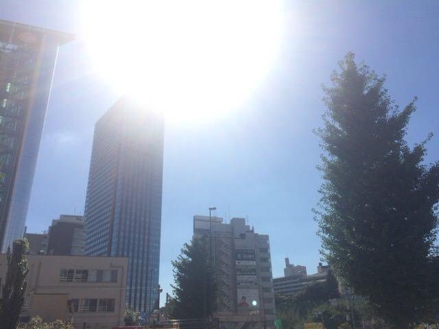 天気良すぎで暑い...