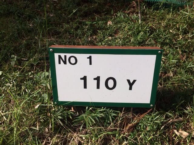 1番ホールは110ヤード