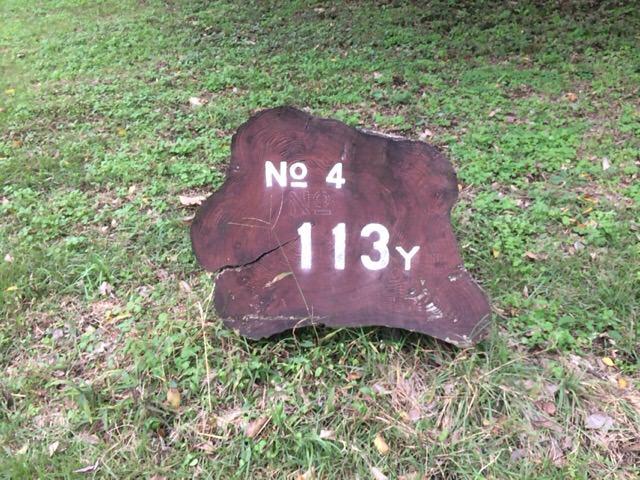 4番ホールのバックティーは113ヤード