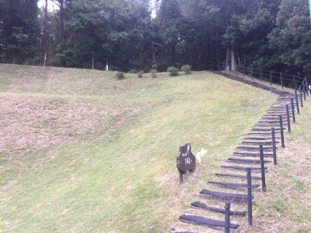 バックティーにはこの階段を上ります!